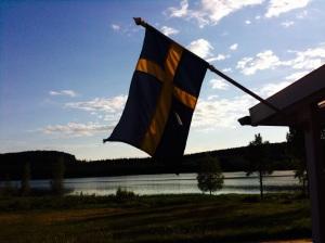 Nurse in Sweden